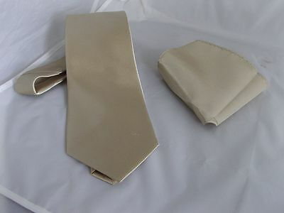 Light Champagne Polyester Mens Tie and Hankie Set > Classic - 3.3