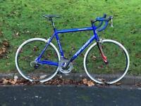 Tifosi XL Road Bike.