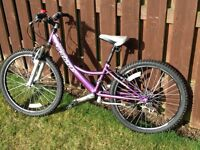 GIRLS BIKE. PULSE AMETHYST.