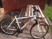 Ladies/Girls mountain Bike in EXCELLENT Condition