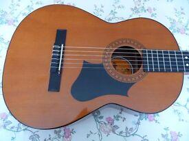 Almeria Acoustic electric guitar