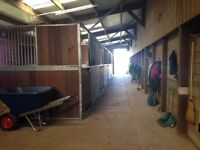 Livery spaces available small private yard fUll, part , DIY