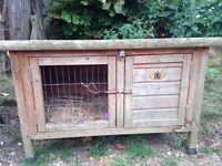 Rabbit coop