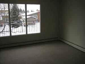 Spacious 2BD available for New Year! Extra incentives for Jan!