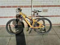 Scorpion Awe Dirt Jump Mountain Bike