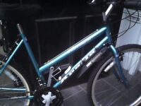APOLLO LADIES MOUNTAIN BIKE,19 INCH FRAME,26 INCH WHEELS,18 GEARS,GOOD TYRES,GEL SEAT,JUST SERVICED.