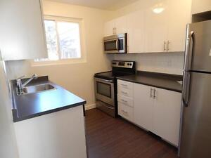 Renovated 3 Bedroom Town homes Available Feb 1st Kitchener / Waterloo Kitchener Area image 3