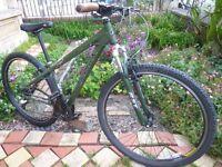 Ridgeback Dual Track 29-er Bike