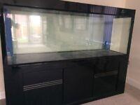 Cleair Aquatics Aquarium Maz 2000, L2000 x W600 x H1540 MM in Black Gloss