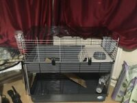Double indoor rabbit hutch