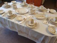Over 100 Items Of Marks & Spencer Harvest Tableware Crockery Dinner Service
