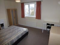 REALLY BIG AND COSY SINGLE ROOM WITH DOUBLE BED TO RENT IN NORTH ACTON - CENTRAL LINE - ZONE 2