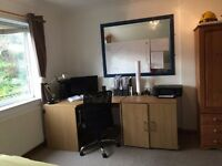 Sunny double room to let in shared house from 11 December ongoing