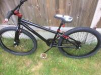 Rayleigh bike