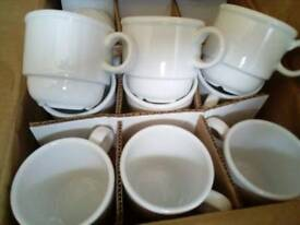 X24 brand new espresso cups restaurant cafes coffee shops