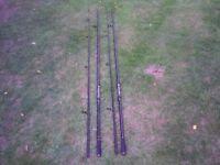 Pair of 12ft Carp Rods