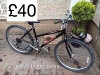Selection of Ladies mountain bike - from £30 - £50 Ladies or girls hardtail mountain bike female