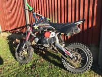 125cc stomp pit bike fully working lifts in each gear change powerful