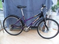 ADULT LADIES GOOD QUALITY RALEIGH VIXEN MOUNTAIN BIKE IN VERY GOOD CONDITION