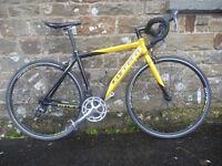Carrera TDF (medium) 54cm road bike