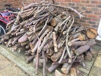 Free Wood for log burning fires