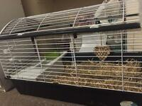 New big cage for rabbits or guinea pigs