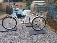 White adult size tricycle with back and front basket