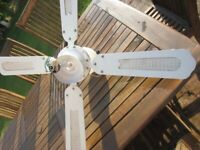 Large ceiling fan / light fitting