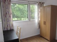 Large Single Room To Rent Near Surrey Quays (available until 15th September )