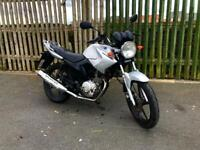 Yamaha YBR 125 2012 - 12 Months MOT - LOW MILAGE *NOT CBF CBR HONDA KTM DUKE RC MT R125 LEXMOTO
