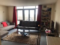 Spacious 1 Bedroom Fully Furnished Flat with Secure Parking Opp Barking Station + Parking