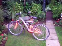 Y frame mountain bike, in good condition hardly used, looks great.