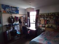 double room for mature student, sharing with 2 others postgrads + owner. £380 pcm inclusive