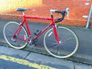 LARGE Carrera Virtuoso Gents Racing Bike