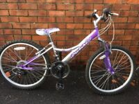 x2 junior bicycles and x1 adult bicycle
