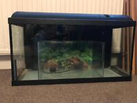 Aquarium, 100ltr with stand and accessories