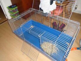 Large Metal Plastic Base Indoor Guinea Pig/Rabbit Cage