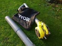 Great condition Ryobi Petrol Leaf Blower