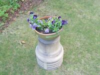 Large chimney cowl for plant display