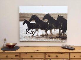 Gallery bloc of running horses