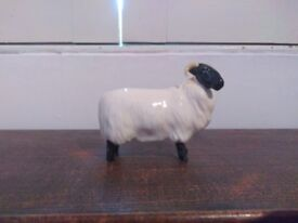 Beswick Black Faced Gloss Sheep