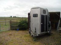 Ivor williams 505 horse trailer 2006 NOW SOLD