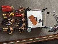 WWE RING & FIGURES