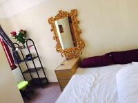 DOUBLE ROOM IN TURNPIKE LANE/SEVEN SISTERS - LIVING ROOM