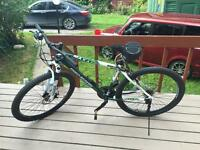 Mountain Bike Adult