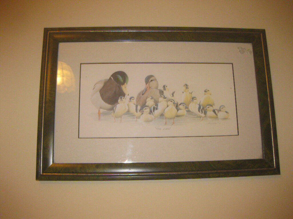 Picture of ducks in green frame | in Crewkerne, Somerset | Gumtree