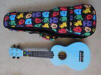 Blue ukelele and case