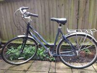 dutch style bike