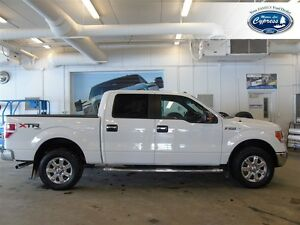 2014 Ford F-150 XLT (Remote Start  Bluetooth  Back Up Camera)