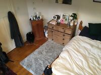 Large Double Room available in spacious House Share